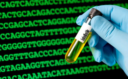 synthetic biology genetic engineering on steroids techcentral