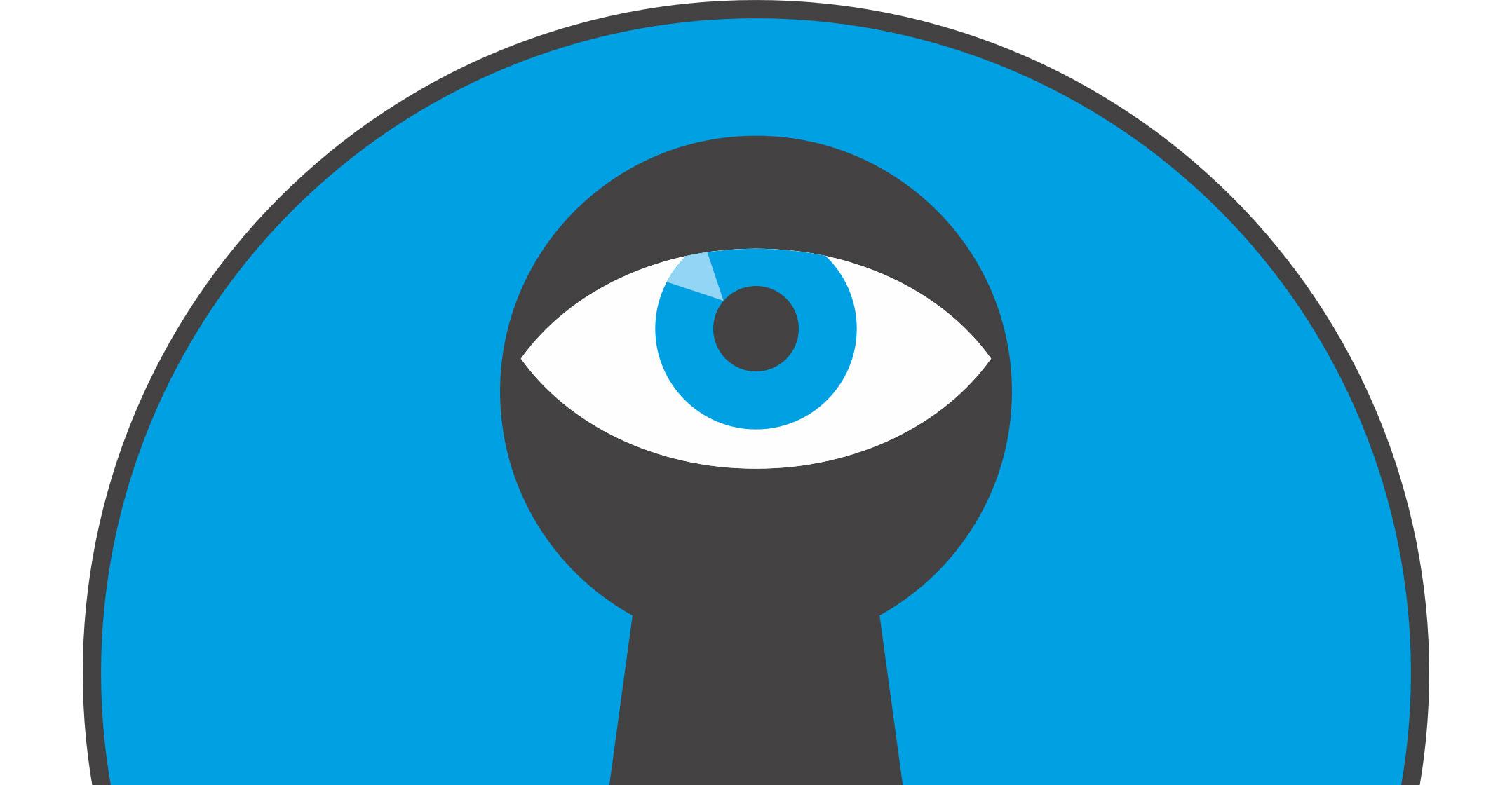 Constitutional court bans bulk Internet surveillance in South Africa